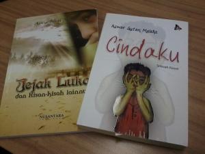 Novel Cindaku